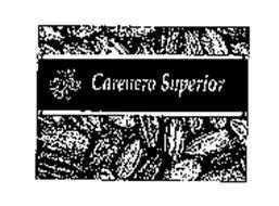 EL REY CARENERO SUPERIOR