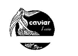 CAVIAR LOUISE