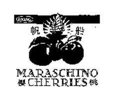 VIKING MARASCHINO CHERRIES