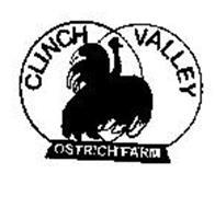 CLINCH VALLEY OSTRICH FARM