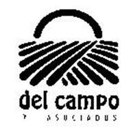 DEL CAMPO Y ASOCIADOS