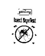 THE PROTECTOR INSECT REPELLENT