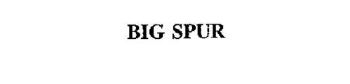 BIG SPUR