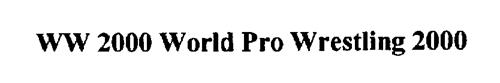 WW 2000 WORLD PRO WRESTLING 2000