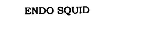 ENDO SQUID