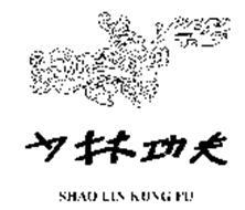 SHAO LIN KUNG FU