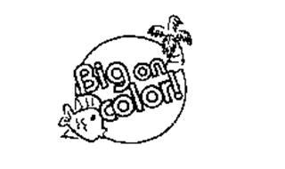 BIG ON COLOR!