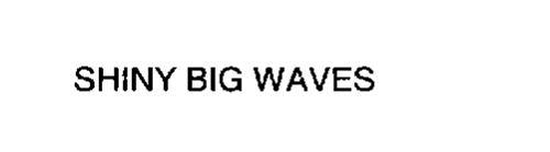SHINY BIG WAVES