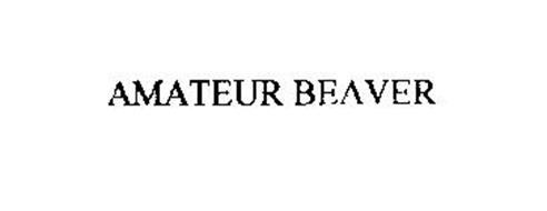 AMATEUR BEAVER