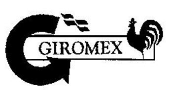 Giromex Trademark Information New Social Ventures Inc Money Transfer Services