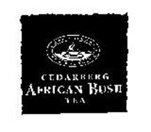 CEDARBERG AFRICAN BUSH TEA