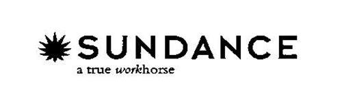 SUNDANCE A TRUE WORKHORSE