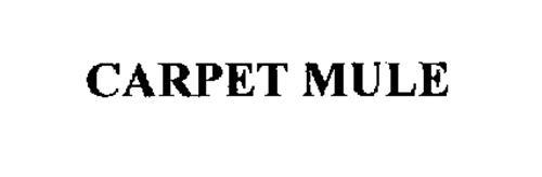 CARPET MULE
