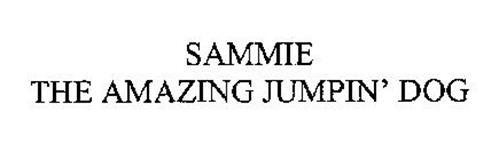 SAMMIE THE AMAZING JUMPIN' DOG
