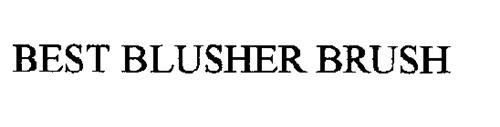 BEST BLUSHER BRUSH
