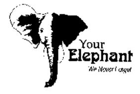YOUR ELEPHANT WE NEVER FORGET