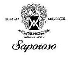 SAPOROSO ACETAIA MALPIGHI MALPIGHI MODENA - ITALY