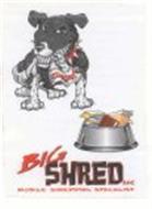 BIG SHRED LLC MOBILE SHREDDING SPECIALIST