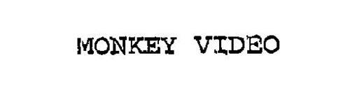 MONKEY VIDEO