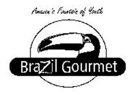 AMAZON'S FOUNTAIN OF YOUTH BRAZIL GOURMET