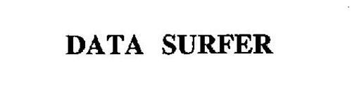 DATA SURFER
