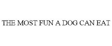 THE MOST FUN A DOG CAN EAT