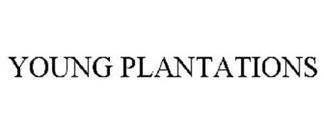 YOUNG PLANTATIONS