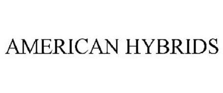 AMERICAN HYBRIDS