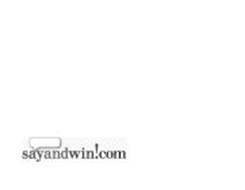 SAYANDWIN!COM