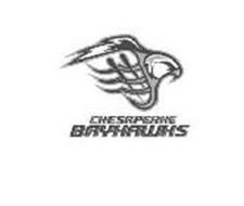 CHESAPEAKE BAYHAWKS