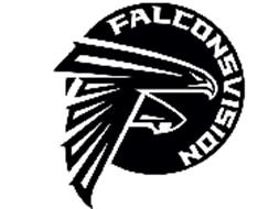 FALCONSVISION