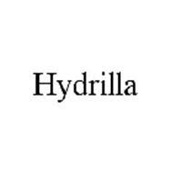 HYDRILLA