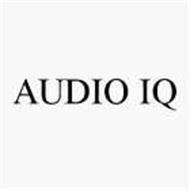 AUDIO IQ
