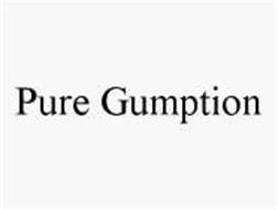 PURE GUMPTION