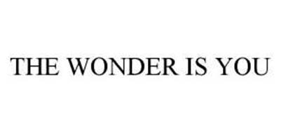 THE WONDER IS YOU