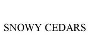 SNOWY CEDARS