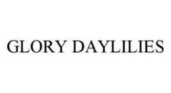 GLORY DAYLILIES