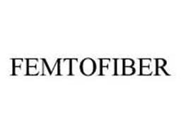 FEMTOFIBER