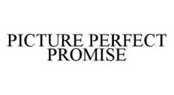 PICTURE PERFECT PROMISE