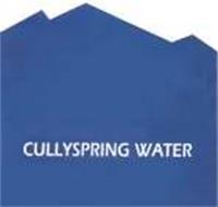 CULLYSPRING WATER