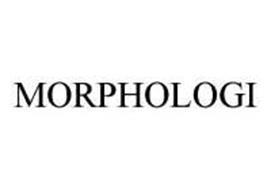MORPHOLOGI