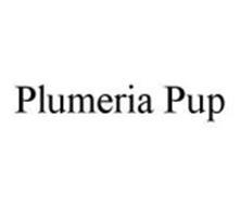 PLUMERIA PUP
