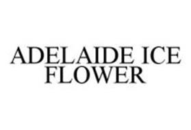 ADELAIDE ICE FLOWER