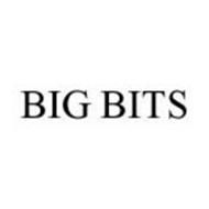 BIG BITS