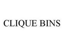 CLIQUE BINS