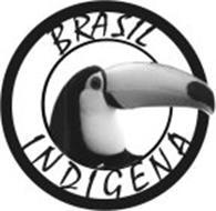 BRASIL INDIGENA