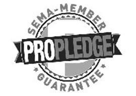 P PROPLEDGE SEMA - MEMBER GUARANTEE