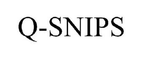 Q-SNIPS