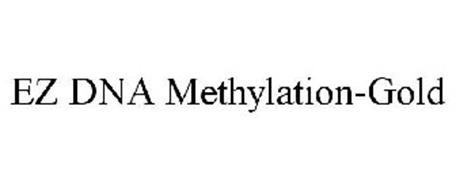 EZ DNA METHYLATION-GOLD