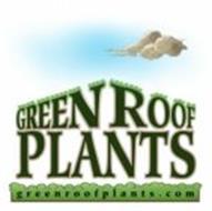 GREEN ROOF PLANTS GREENROOFPLANTS.COM